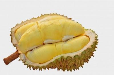 7 Manfaat Buah Durian Bagi Kesehatan