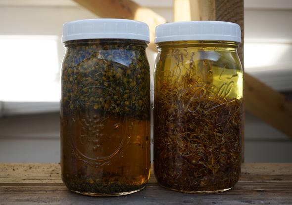 lavender chamomile calendula infused oil