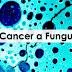 ''Câncer é um fungo: Bicarbonato de sódio ajuda a curar o câncer'', diz oncologista banido da Itália