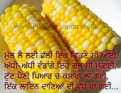 Funny Comments on Facebook in Punjabi Funny Punjabi Comments Photos