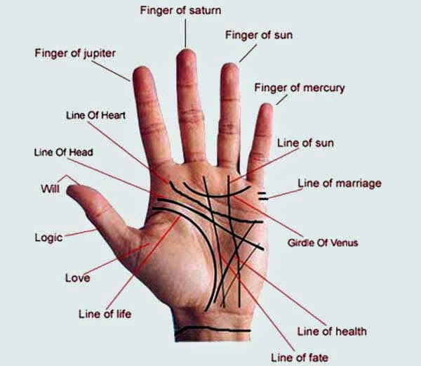 Palmistry About Good And Bad Things