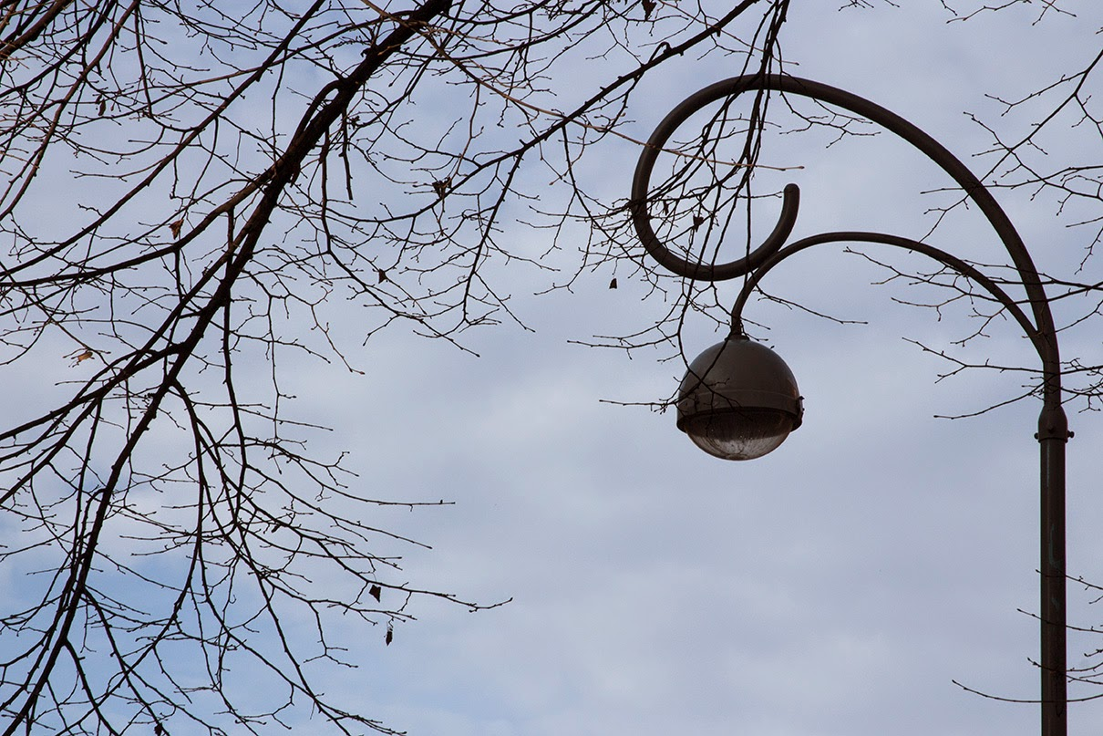 lamppost with bare branche