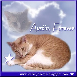 RIP AUSTIN