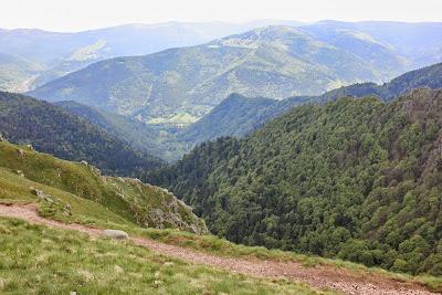 View over les Vosges, France, Stephanie Kilgast