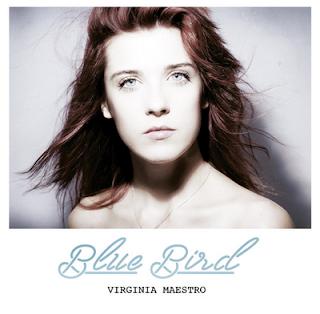 Virginia Maestro Blue Bird