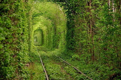 Tunnel of Love Green spot on the Railway, Ukraine