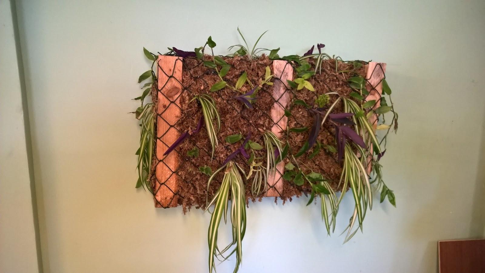 Sehr les-mains-vertes.blogspot: Création d'un mur végétalisé avec une  ZP06