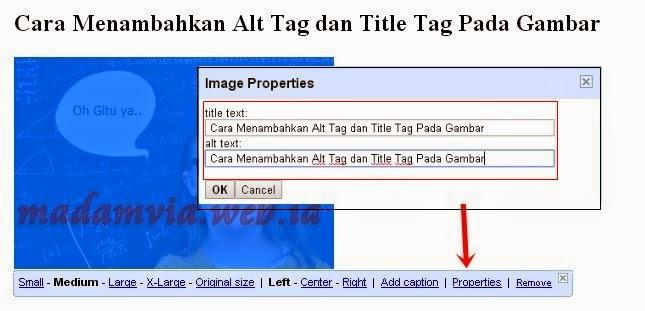 Optimasi SEO Menambahkan Alt Tag dan Title Tag Pada Gambar