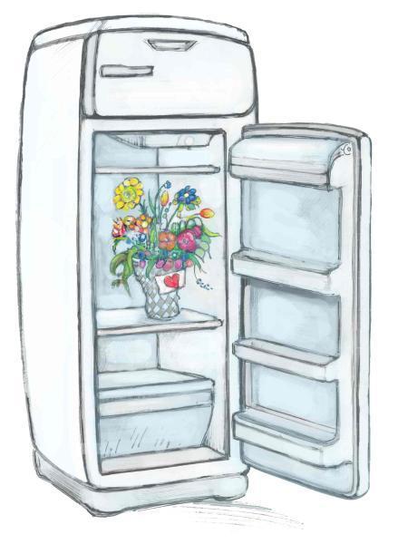 le frigo de ma belle m re. Black Bedroom Furniture Sets. Home Design Ideas