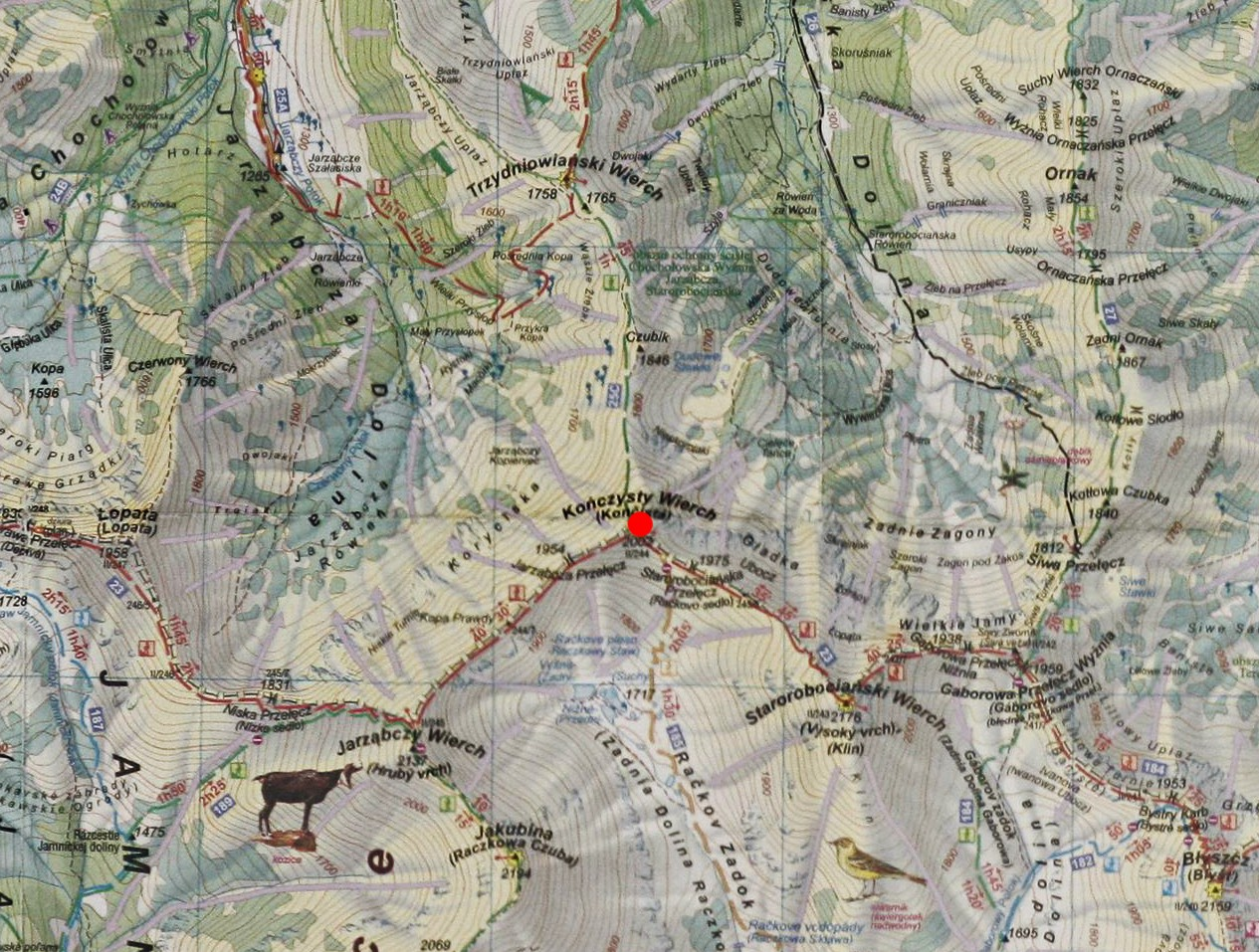 Kończysty Wierch na mapie