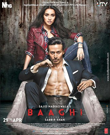Baaghi: A Rebel in Love