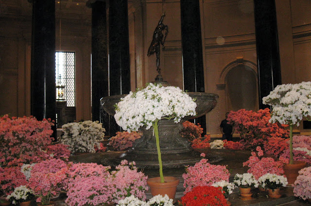 Spring flowers in the National Art Gallery