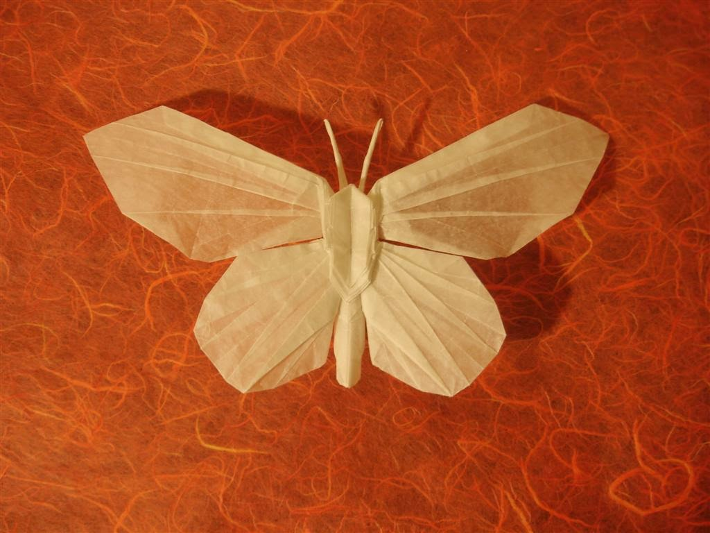 origami butterflies ~ origami flower easy - photo#15