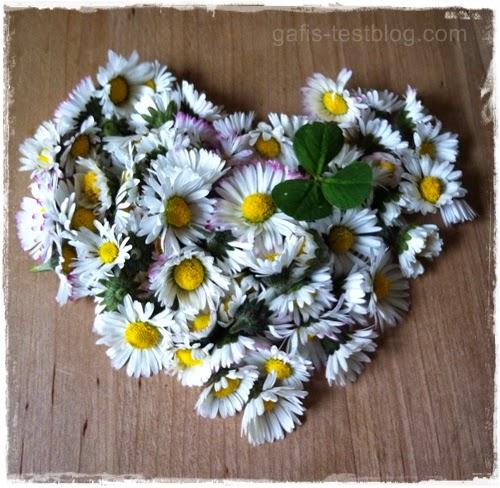 Gänseblümchen Herz