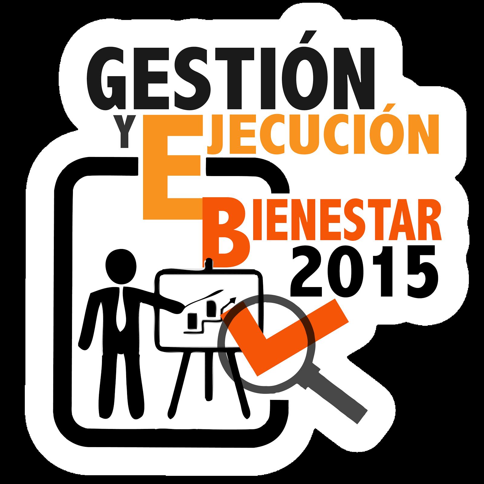Gestión y Ejecución Bienestar 2015