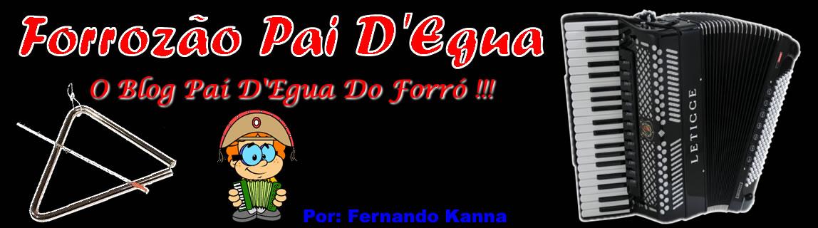 FORROZÃO PAI D'EGUA