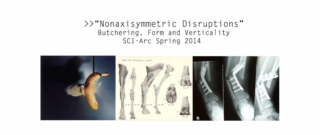 SCI-Arc Spring 2014 Hernan Diaz Alonso Studio