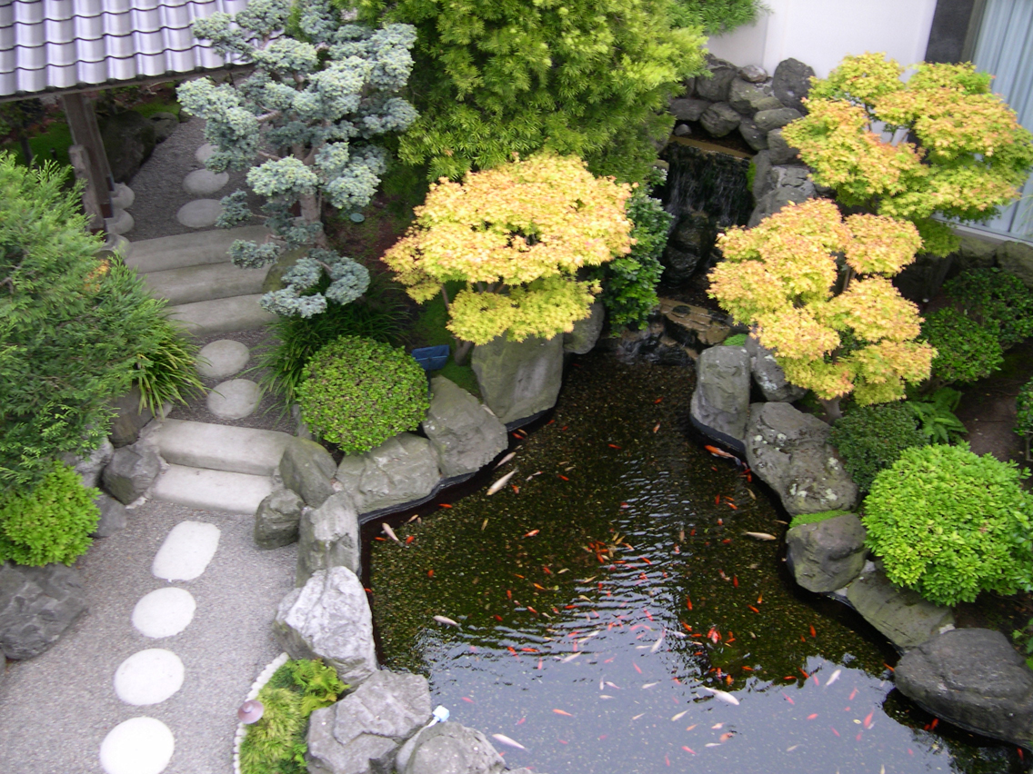 Home garden design gallery tips to make minimalist simple for Simple koi pond