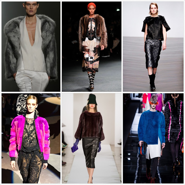 Fall 2013, Winter 2014