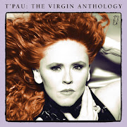 The Virgin Anthology
