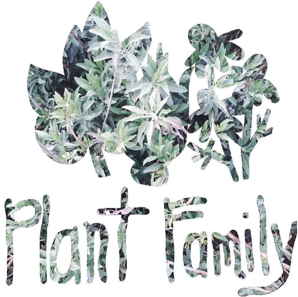 proud member of the Plant Family
