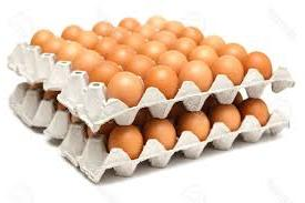 keranjang telur / egg tray