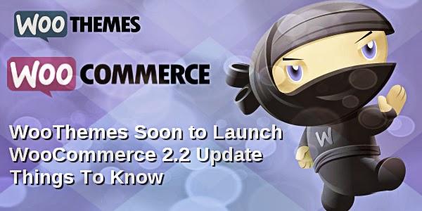 Woocommerce Development Service