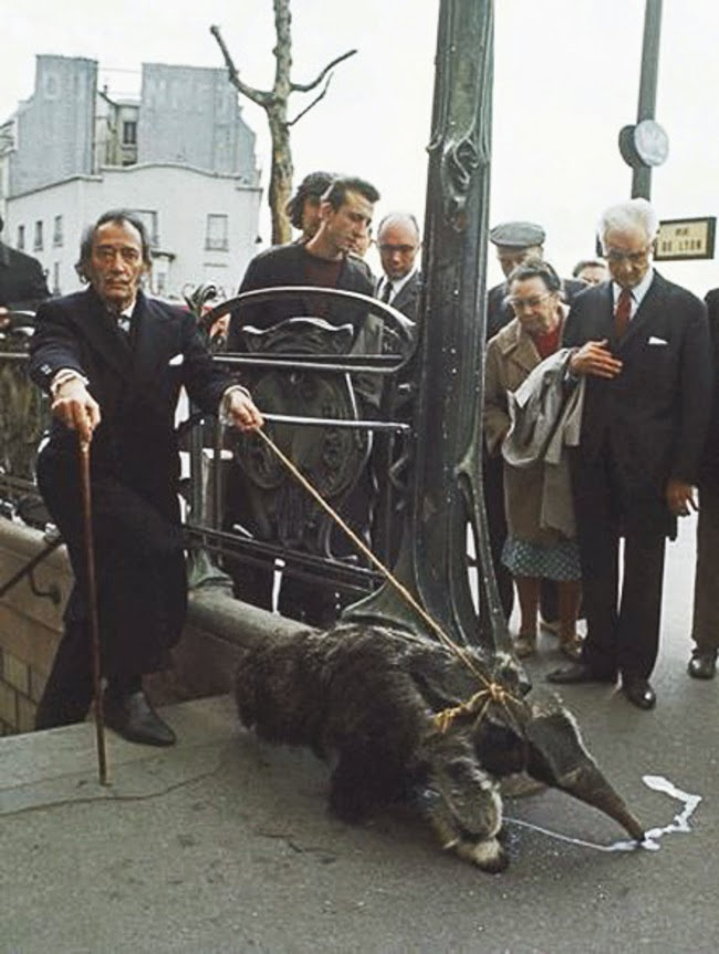 24 Rare Historical Photos That Will Leave You Speechless - Salvador Dali walking his pet anteater in 1969.