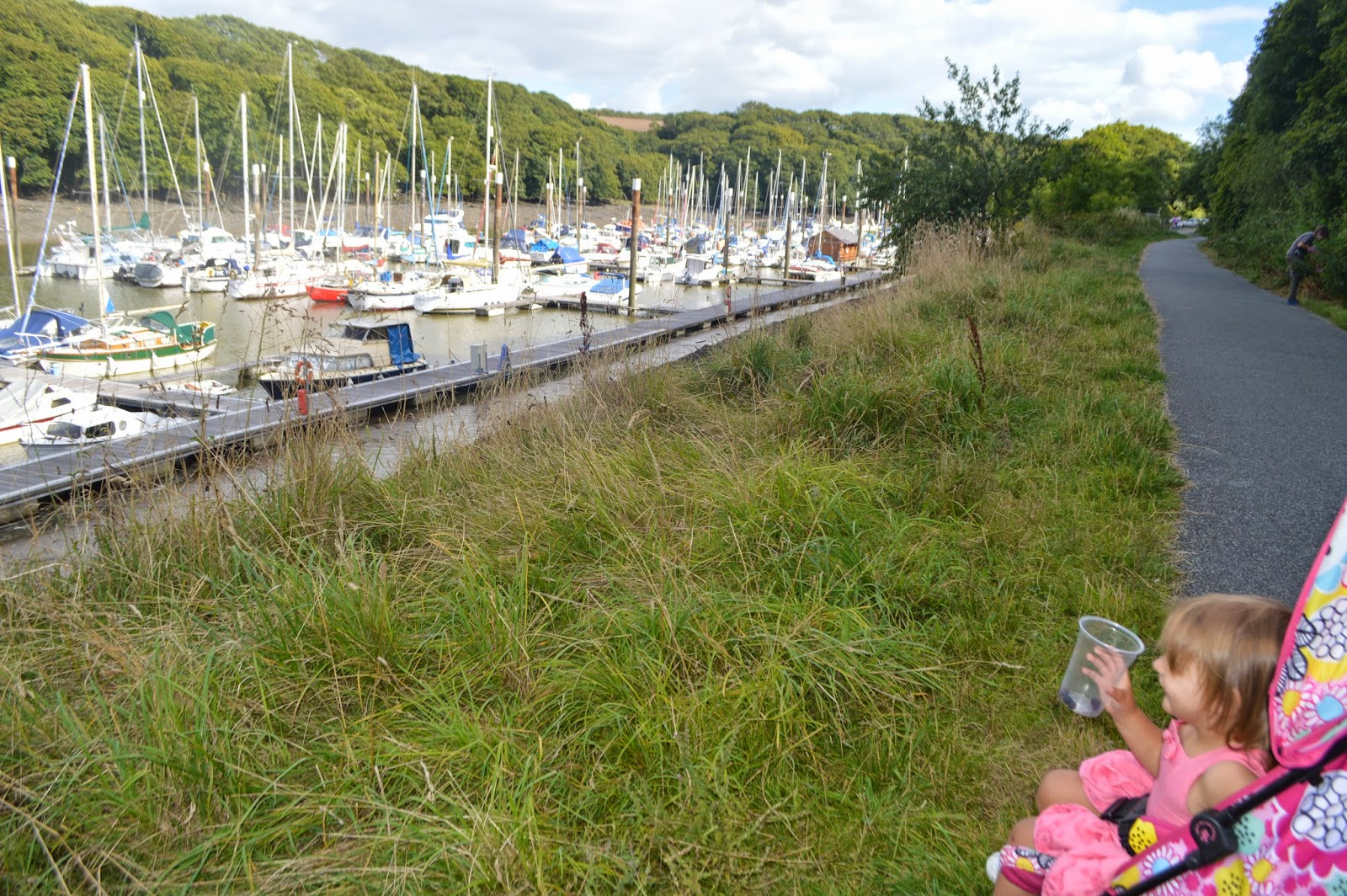 Blackberry Picking, Neyland, Marina, Pembrokeshire, Crumble, Apple Pie, Baking, country kids, Wales