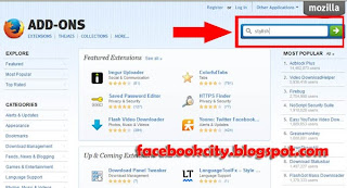 How To Change Facebook With a Thousands Facebook Themes (skins)