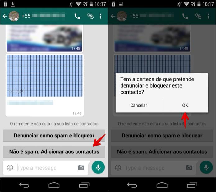 Denunciando spammer no WhatsApp para Android (Foto: Reprodução/Helito Bijora)