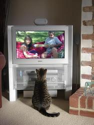 En distintos canales de TV