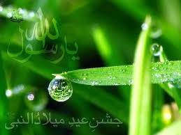 Ya Muhammad s.a.w.w.