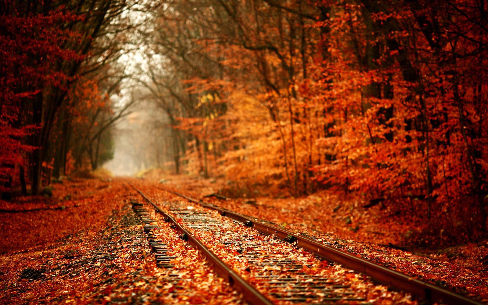 railroad track - Google-sok | Quadrum | Pinterest | Wallpaper and .