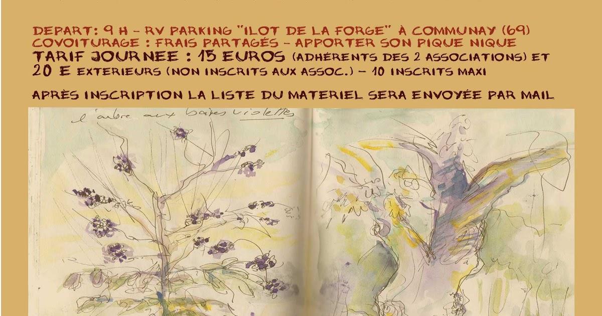 Couleurs vagabondes au jardin du bois marquis vernioz 38 - Jardin bois marquis vernioz colombes ...