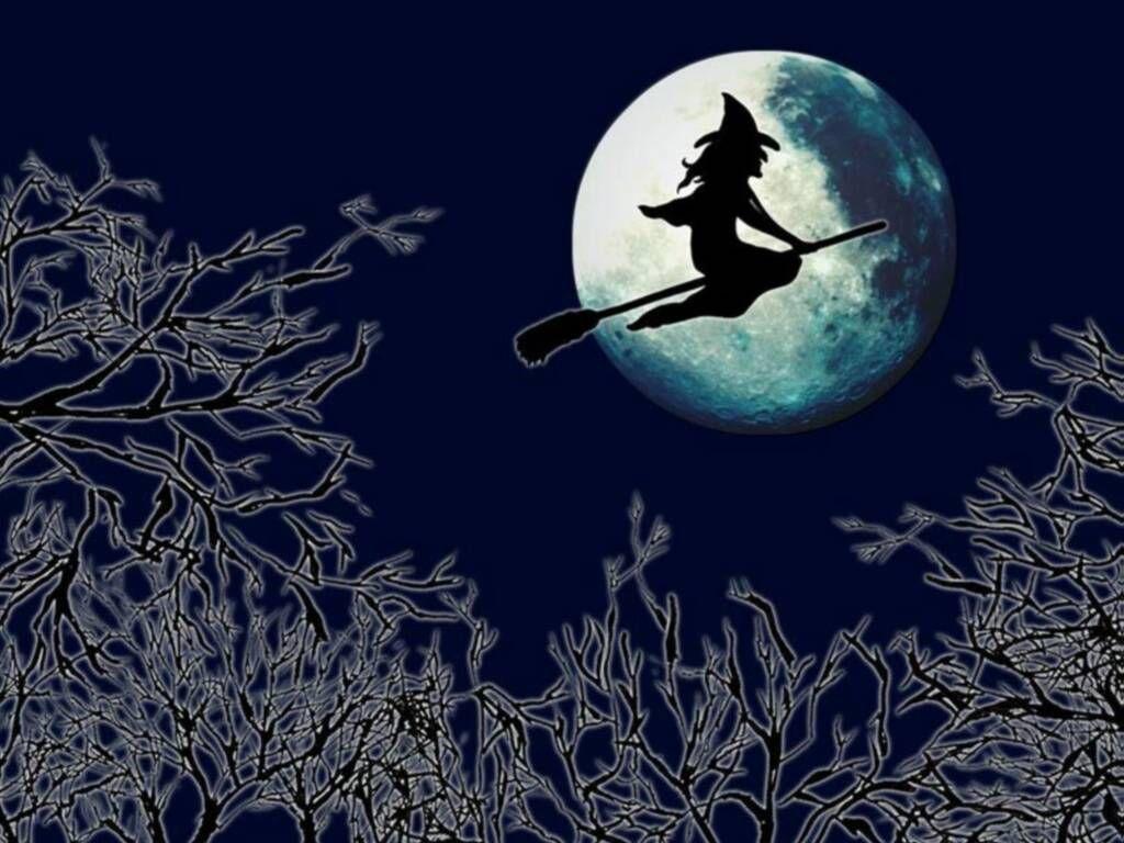 El cofre de los cuentos: Historias de brujas