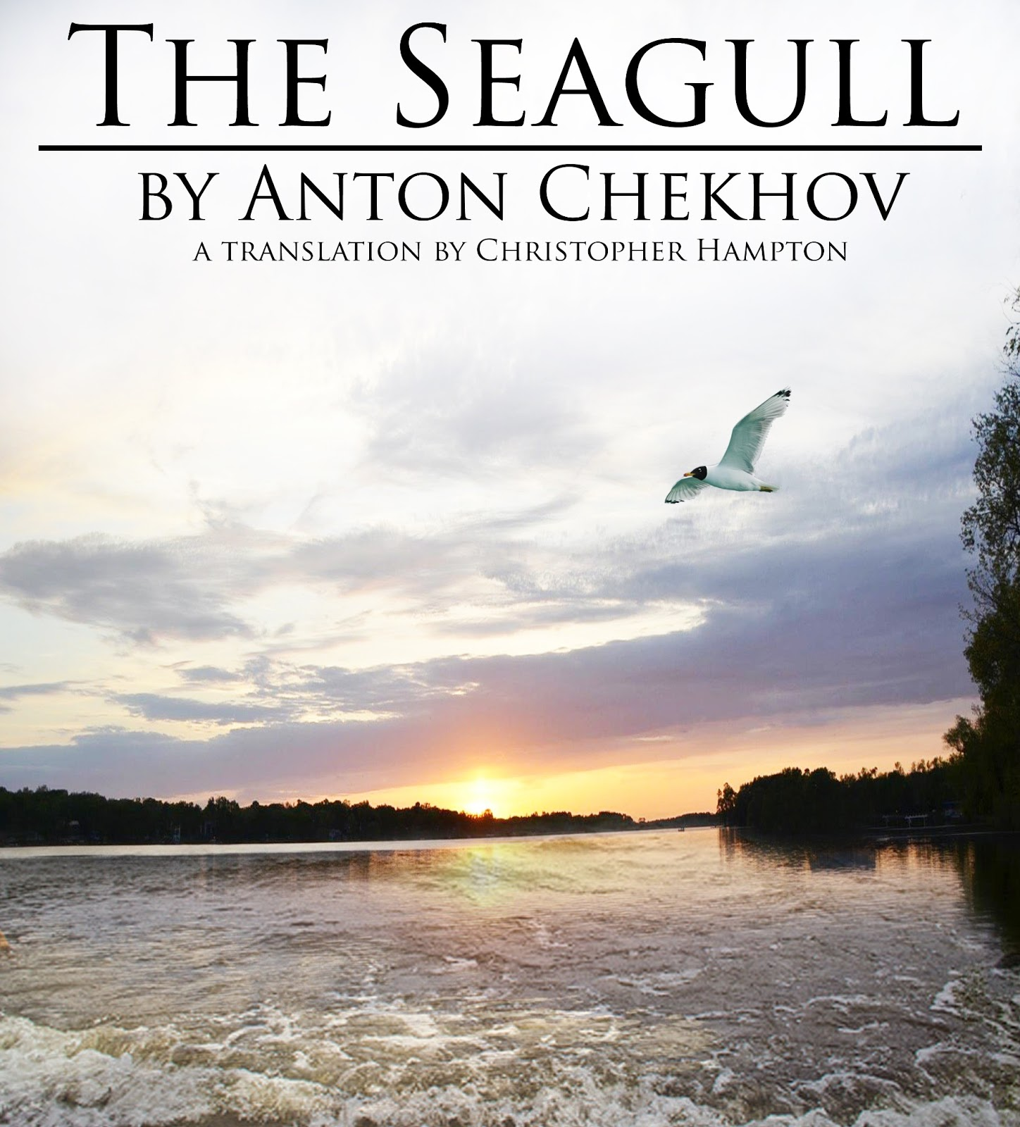 multi dimensionality in the seagull by anton The seagull proves that classic theatre does not always translate well to the modern cinema despite a stellar cast and an attempt to remain faithful to the original script, this translation of the russian stage production struggles to catch the imagination of this era.