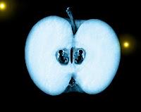 serie fringe manzana