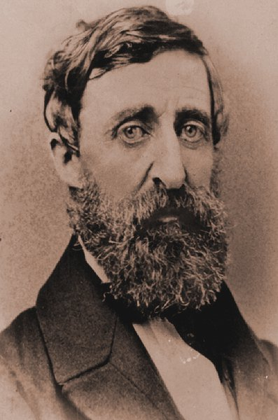 thoreau today These are just some of the terms by which the work of henry david thoreau can be thoreau enjoys greater national and international popularity today than ever.