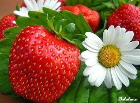 Las fresas-Bulalaica