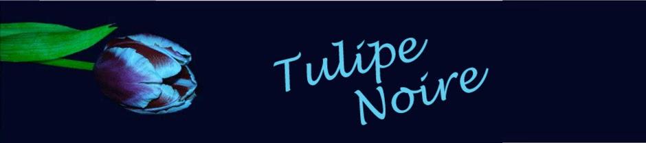 Tulipa Negra (Tulipe Noire)