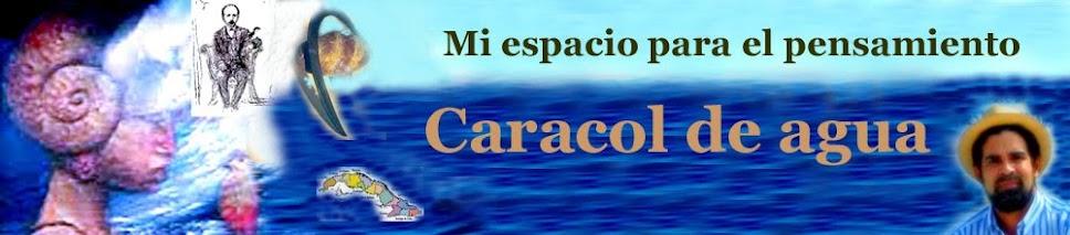 Blog Caracol de Agua