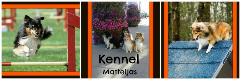 Kennel Matteijas