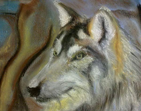 lobo en acrilico y pastel