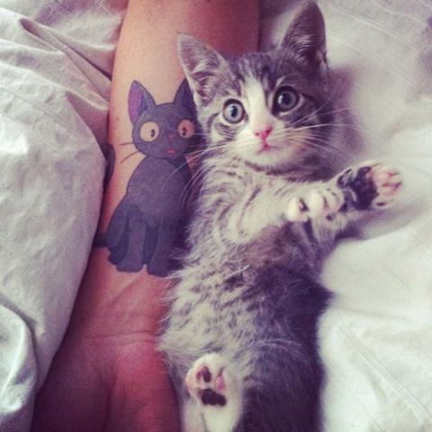 Лучшие татуировки для девушек фото эскизы