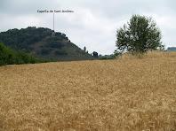 La capella de Sant Andreu des dels camps del Serrat de Bussanya