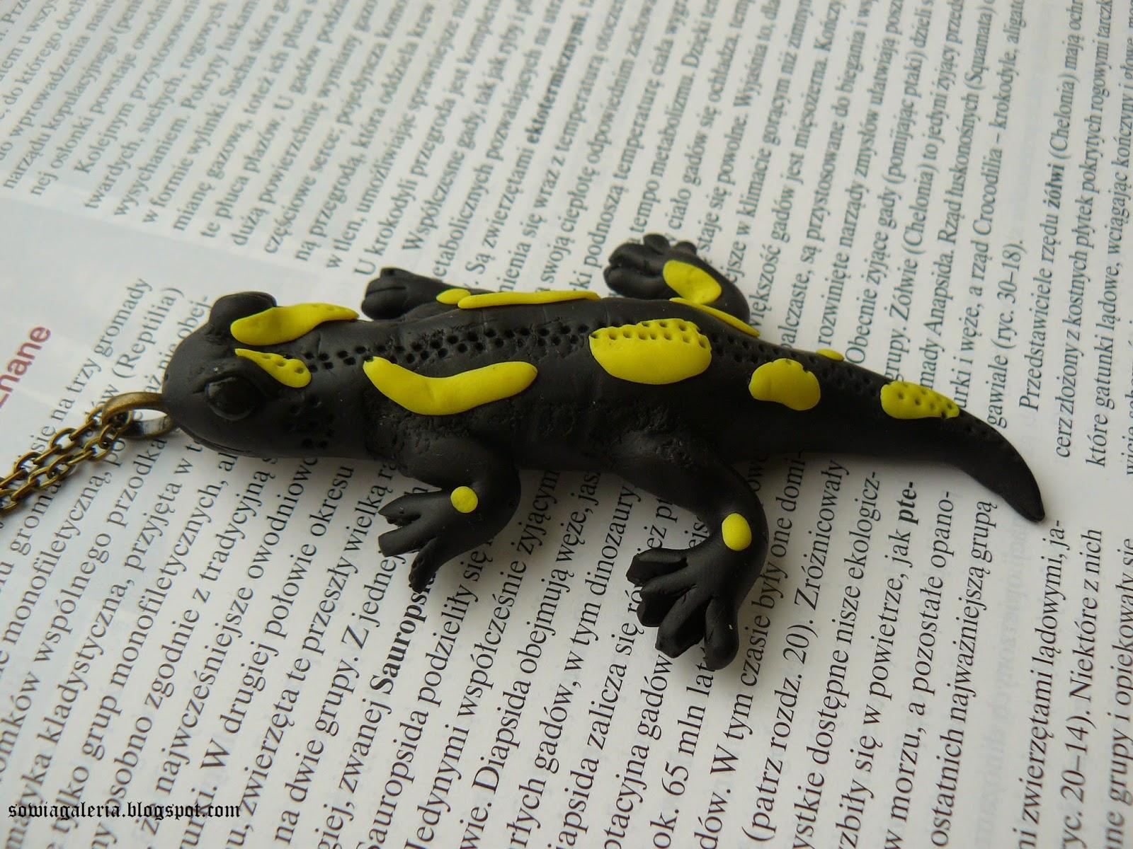 http://sowiagaleria.blogspot.com/2014/08/salamandra-salamandra.html