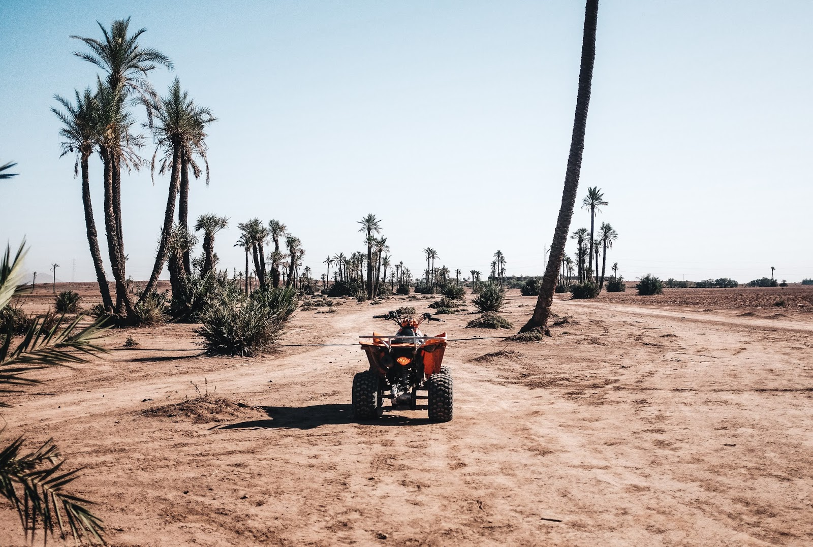 Quad Bike in Rock desert Palm Grove Marrakech Morocco