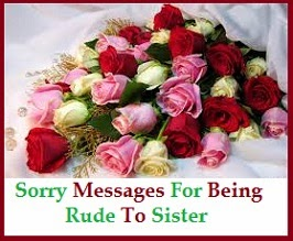 Sorry Messages Sister