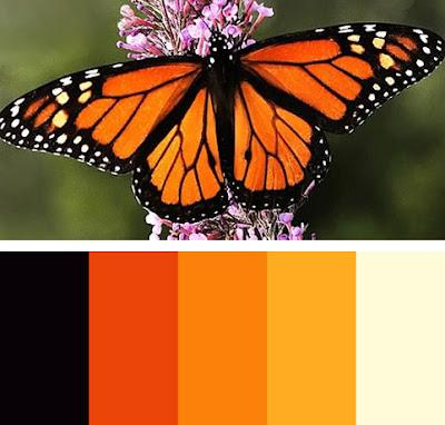 бабочки палитра цвета_babochki palitra cveta
